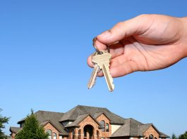 The Silver Life - Empty nest - how to find a new home