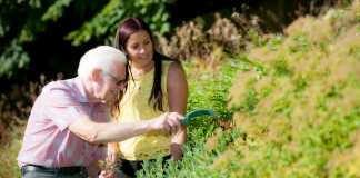 The Silver Life - Tips for taking care of our ageing parents