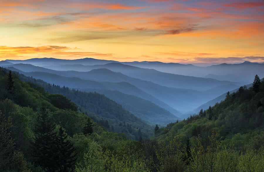 The Silver Life - Great Smokey Mountains