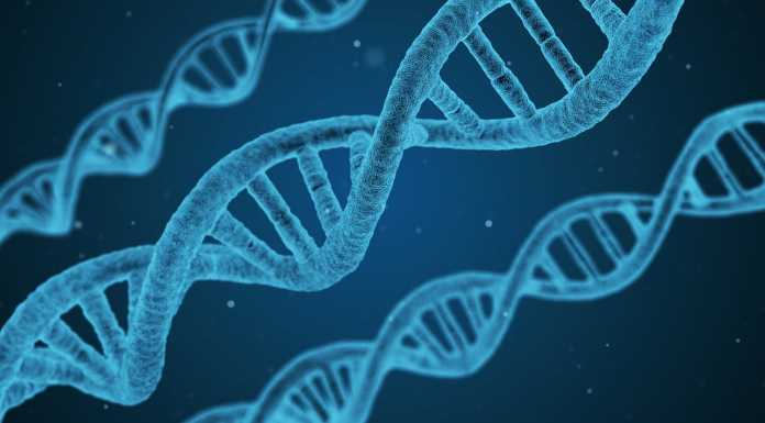 Data is Your Digital DNA