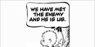 What can we do? Walt Kelly 1971