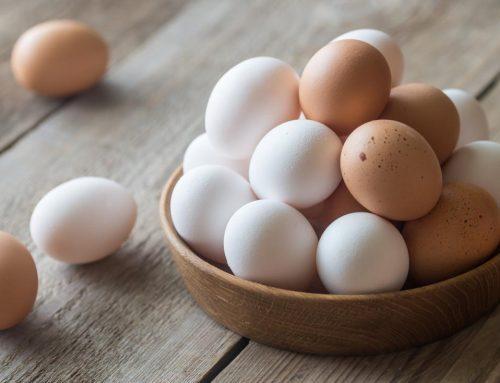 Should I or shouldn't I eat eggs?