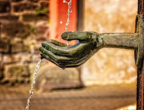 The Fundamental Need for Water